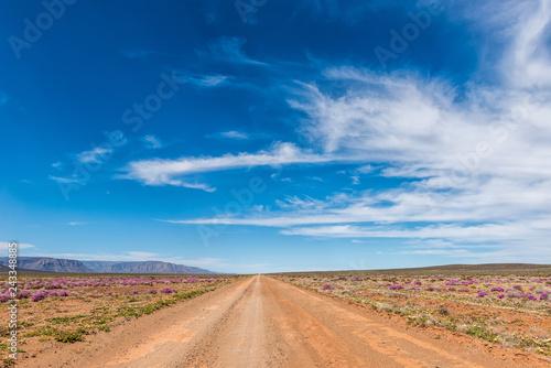 Road landscape in the Tankwa Karoo