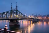 Liberty bridge in Budapest at winter night