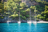 Sailboat on Water - 243375613