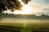 Sonnenaufgang mit Nebel - 243397831