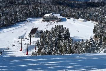 日本のスキーリゾートでウィンタースポーツを楽しむ人