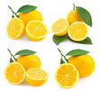 Lemon fruits isolated