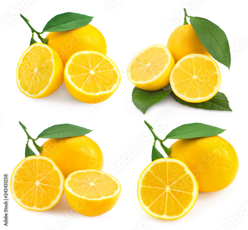 Lemon fruits isolated - 243431258