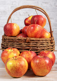 red and yellow organic apples from Normandy - 243433439