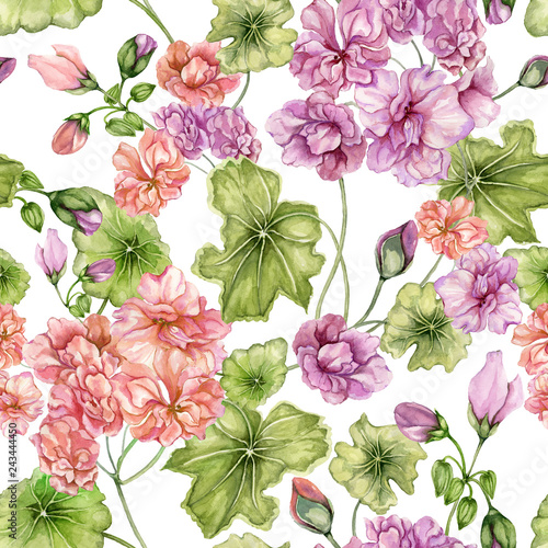 Beautiful floral background with pelargonium flowers and leaves on white background. Seamless botanical pattern.  Watercolor painting. Hand painted floral illustration. © katiko2016