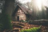 Vergessene Hütte im Wald - 243468031