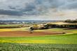 Fauchage dans les champs en automne