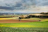 Fauchage dans les champs en automne - 243469839