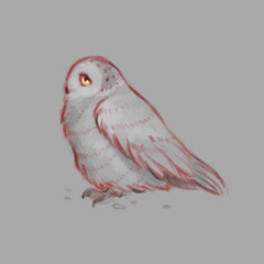 Sketch style illustration with owl. Cute little owl character. Bird creature.