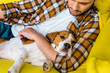 handsome man in checkered shirt relaxing on sofa with beagle dog