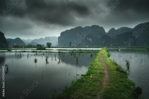 Vietnam nature landscape green mountains reflected in the water