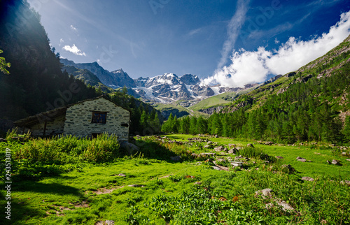 Panoramic view, in the grips of a mountain pasture, of the south face of Monte Rosa in Piedmont, Italy.