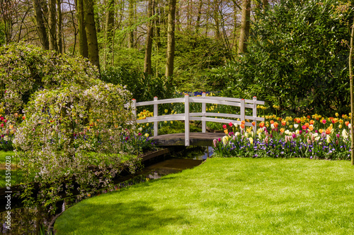 Wall mural garden landscape.  garden in spring