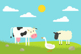 Flat Cow, goose and sheep standing on field. Vector illustration. - 243538607
