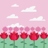 Fototapeta Fototapety na sufit - pink tulips flowers garden © djvstock