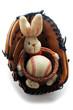 Baseball  ft6112_3988 Pallabase