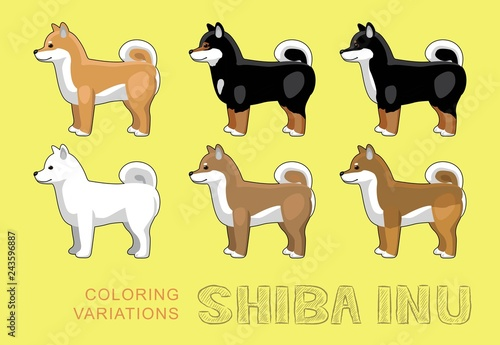 Dog Shiba Inu Coloring Variations Vector Illustration