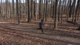 Aerial camera moving backwards as a trail runner runs toward the camera and down a trail in a forest. - 243603481
