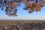 Vorderpfalz Panoramablick - 243644674