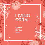 Color of the year 2019 - Living Coral swatch - 243661234
