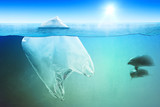 Two dolphins swimming near plastic bag in the open sea - 243669248
