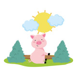 pig in the farm - 243711890