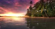 Sunset on paradise island. Tropical beach with palm trees on sea coast