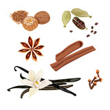 Set vector icons spices. Cardamom, star anise, nutmeg, vanilla flower and sticks, cloves, cinnamon. Vector Illustration. - 243725673