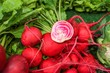 red white striped beetroot