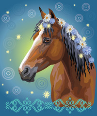 Horse portrait with flowers19 © alinart