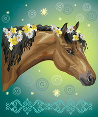 Horse portrait with flowers20 © alinart