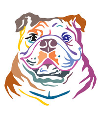 Colorful decorative portrait of Dog Bulldog vector illustration © alinart