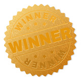 WINNER gold stamp award. Vector gold award with WINNER text. Text labels are placed between parallel lines and on circle. Golden skin has metallic texture. - 243785498