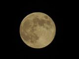 Fototapeta Space - księżyc © dulak