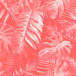 Leinwandbild Motiv Tropical leaves background with pantone color of the year 2019 Living Coral