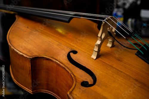 Double bass - 243828852