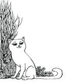 белый кот черное и белое изображение графика