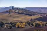 The curved country road through picturesque hills in Tuscany, Italy - 243871018