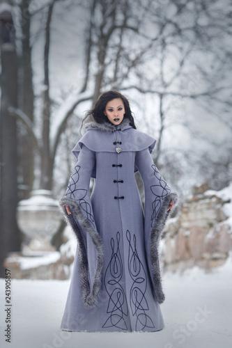 Elegant Asian girl in a gray fantasy long-sleeved coat in winter park.