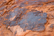 petroglyphs at Valley of Fire in Nevada