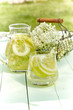 Infusion of fresh elderflowers with lemon - 243931407