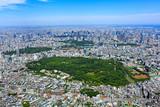 Fototapeta Do pokoju - 都市風景/代々木公園全景、空撮 © show-m