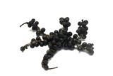 dry Black  pepper isolate on white background  - 243974898