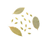 Green cardamom and bay leaves on white background - 244005824