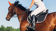 A woman jockey rides a horse in a competition in jumping. - 244092298