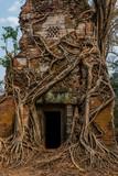 Kingdom of Temples