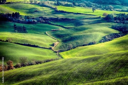 Poster Tuscany landscape