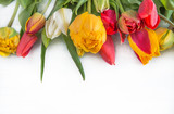 Fototapeta Tulipany - Beautiful bunch of fresh multicolored tulips on the white background with copy space © stsvirkun
