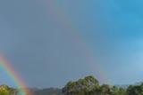 Fototapeta Tęcza - Rainbow over a field © RLobo_Fotografia