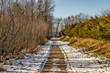 Boardwalk Leading to Lake Michigan